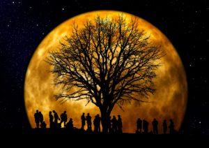 Max Meditation Full Moon Meditation @ Online